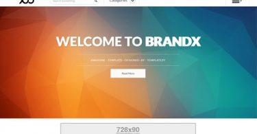 brandx-blogger-template